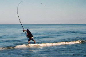 Surf fishing 101 contined virginia beach charter boats for Surf fishing virginia beach
