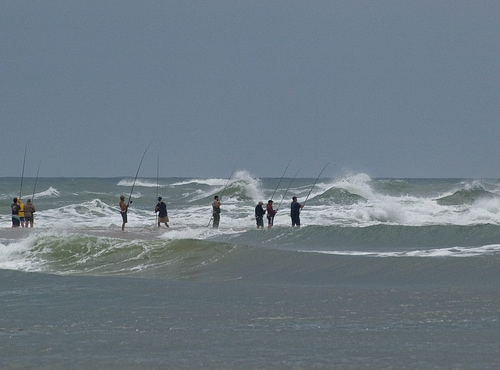 North carolina fishing report for Nc surf fishing report