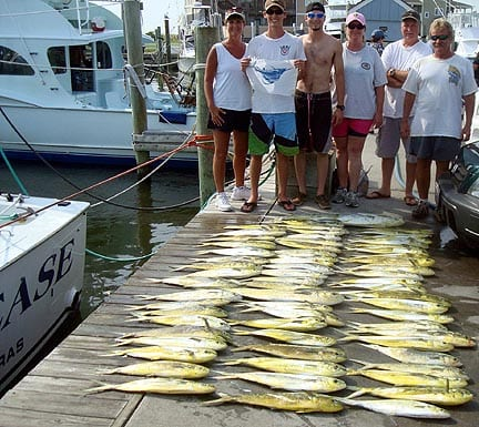 Dolphin vbsf virginia beach charter boats fishing reports for Fishing outer banks nc