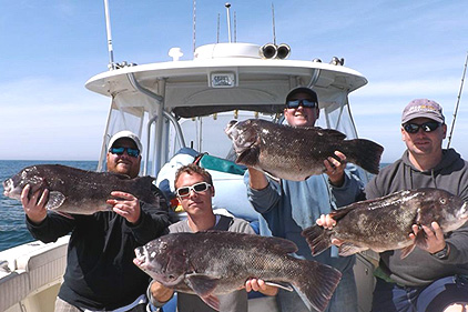 Virginia fishing report for Lynnhaven inlet fishing report