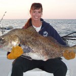 black drum julie