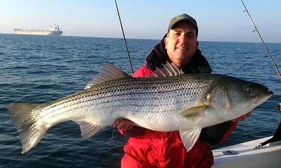 Peninsula salt water sport fisherman s report virginia for Virginia saltwater fishing report