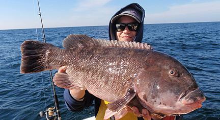 Peninsula salt water sport fisherman report for Saltwater drum fish