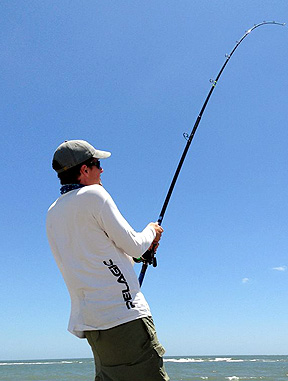 Ak virginia beach charter boats and fishing reports for Virginia beach surf fishing report