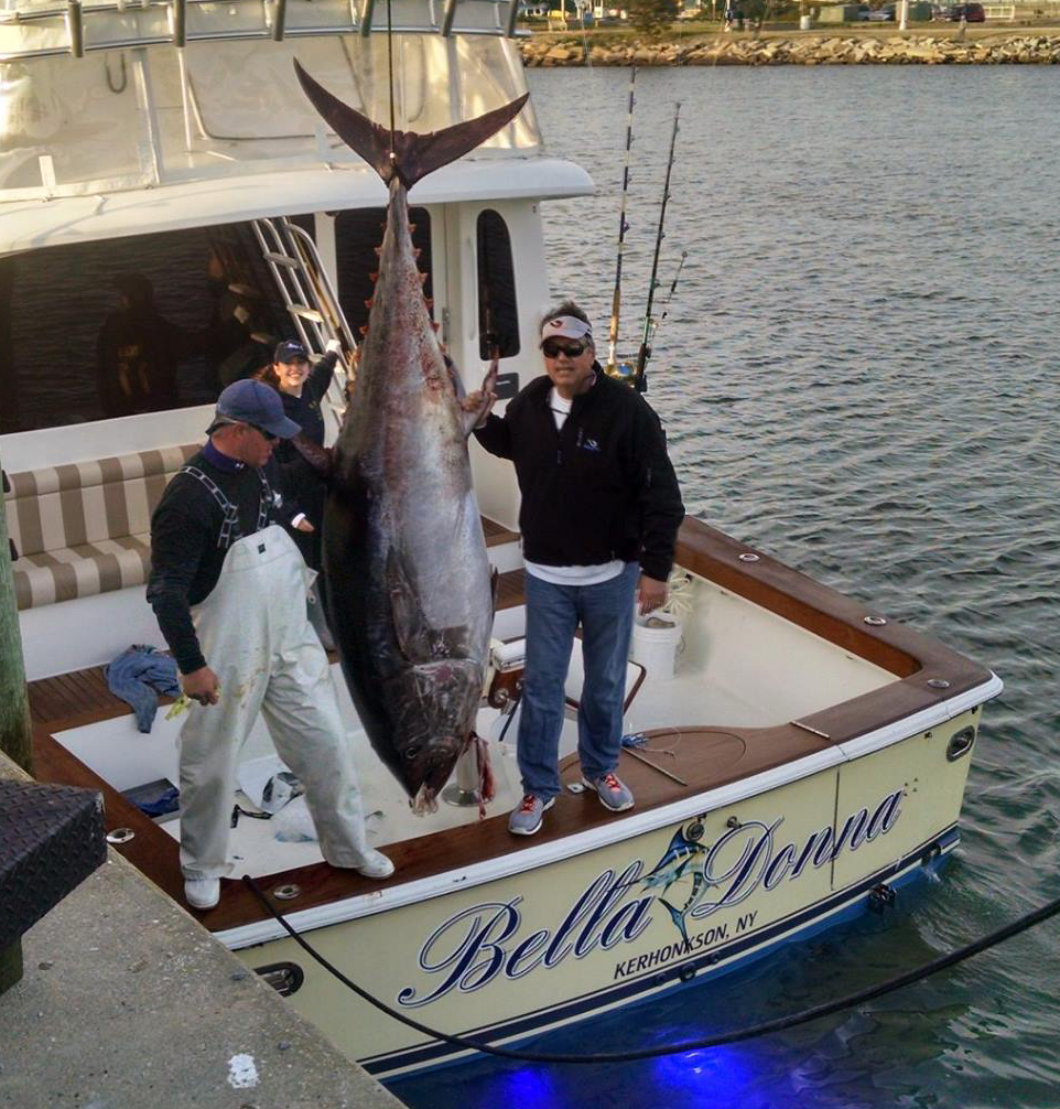 Vswft Committee Member Craig Paige Began The Certification Process For A Potential Record Bluefin Tuna That Was Brought Into Rudee Inlet This Evening