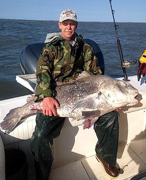 Virginia beach fishing report for Lynnhaven inlet fishing report