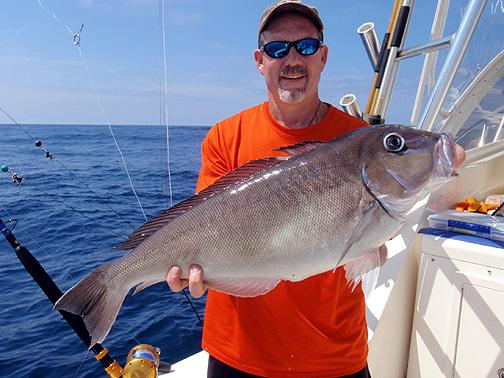 Saltwater sport fisherman report virginia beach fishing for Virginia saltwater fishing report