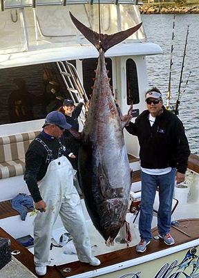 Va record bluefin virginia beach charter boats fishing for Lynnhaven inlet fishing report