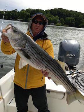 Virginia freshwater fishing report virginia beach fishing for Sandy river fishing report