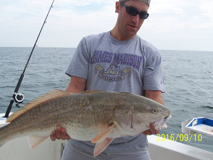 Virginia north carolina maryland saltwater fishing for Hampton roads fishing report