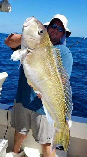 Wommack2 virginia beach charter boats fishing reports for Virginia saltwater fishing report