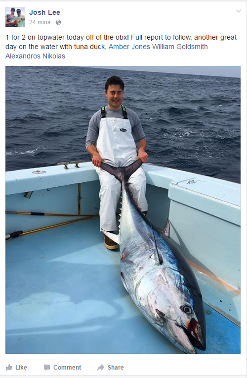 Saltwater snapshot virginia beach charter boats and for Virginia saltwater fishing report