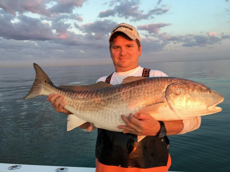 Reports virginia beach charter boats fishing reports for Va fishing report